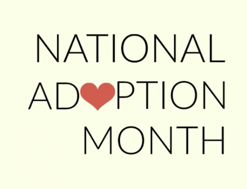 November is Adoption Awareness Month!